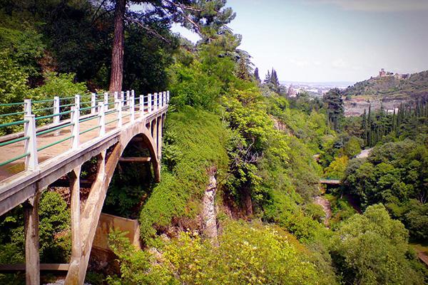Тбилиский ботанический сад