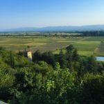 Алазанская-долина