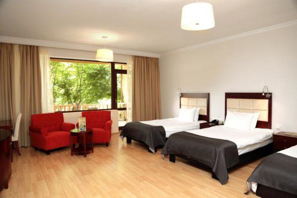 hotel_lopota (11)