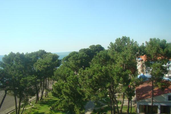 kolkhida (3)