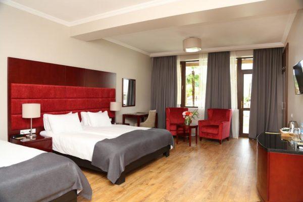 hotel_lopota (12)
