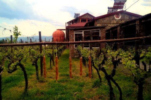 twins_wine_cellar (5)